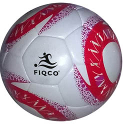 Indoor Ball